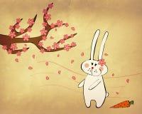 兔宝宝迷住了春天 图库摄影