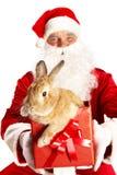兔宝宝逗人喜爱的圣诞老人 免版税库存照片