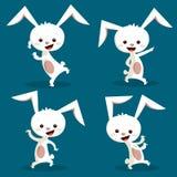 兔宝宝逗人喜爱的跳舞 图库摄影