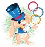 兔宝宝魔术师 库存图片