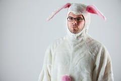 兔宝宝:严肃的兔子人 免版税库存照片