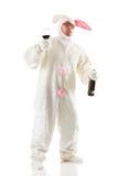 兔宝宝:兔子有喝的太多 库存图片