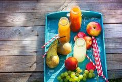 党夏天室外野餐汁液装瓶木 免版税图库摄影