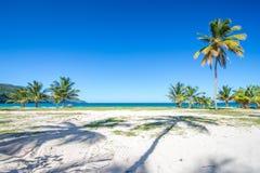 入口到其中一个最美丽的热带海滩在加勒比, Playa林孔 免版税库存图片