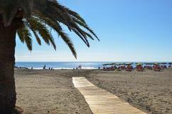 入口到海滩里 免版税库存图片