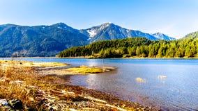 入口向有金黄耳朵的雪加盖的峰顶,兴奋峰顶和海岸山脉的其他山峰的Pitt湖 免版税库存图片