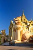入口巨型狮子塔shwedagon仰光 图库摄影