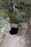 洞入口 库存图片