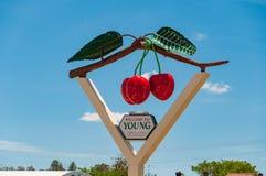 入年轻城市的标志-澳大利亚的樱桃首都 库存照片