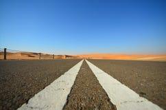 入沙漠 库存图片