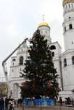 全俄国圣诞树的主要装饰在克里姆林宫的大教堂正方形的 库存照片
