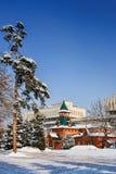 全国乐器博物馆,阿尔玛蒂,哈萨克斯坦 图库摄影