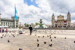 全国危地马拉Cityi的劳动人民文化宫&大教堂 免版税库存照片