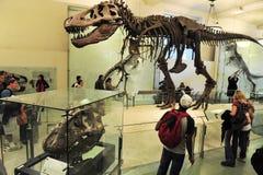 全国历史的美国博物馆