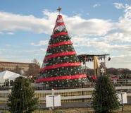 全国圣诞树2014年 免版税图库摄影
