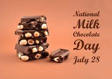 全国牛奶巧克力天股票图象 图库摄影