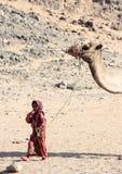 全国礼服的流浪的女孩走与一头骆驼的在沙漠 免版税库存照片
