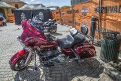 全国肉猪集会哈尔登,挪威2014年6月12日到15日(自行车) 库存照片