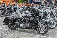 全国肉猪集会哈尔登,挪威2014年6月12日到15日(自行车) 免版税库存图片