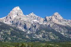 全国越野障碍赛马全景公园teton美国查看怀俄明 库存照片