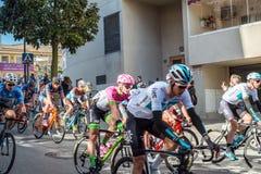 全市专业骑自行车者 库存图片