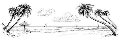 全景传染媒介海滩视图 与棕榈和遮阳伞的例证 黑白手工制造图画 库存照片