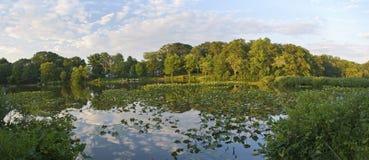 全景公园池塘 免版税库存图片
