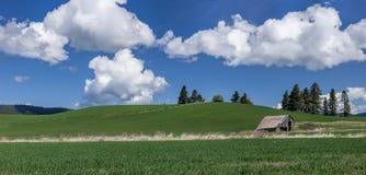 全景农村北部的爱达荷 免版税图库摄影