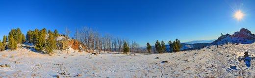 全景冬天视图在阿尔泰山的一个晴朗的早晨,西伯利亚,俄罗斯 免版税库存图片