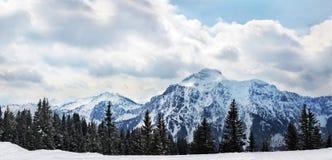 全景向施万高的, Germany阿尔卑斯 库存照片