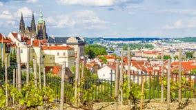 全景在布拉格 cesky捷克krumlov中世纪老共和国城镇视图 库存照片
