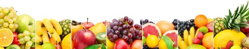 全景在白色背景隔绝的收藏新鲜水果 免版税库存照片