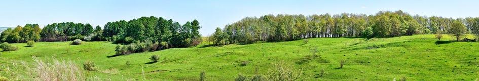 全景小山 俄罗斯的欧洲部分 平稳的倾斜 森林传送带 一个晴朗的春日 库存图片