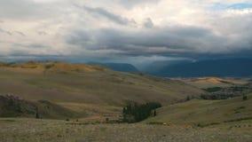 全景录影,绿色山由云彩报道 多小山横向 在距离的小吃草的母牛 股票录像