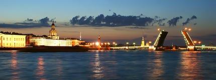 全景彼得斯堡俄国st 免版税库存照片