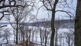 全景有冻湖的冬天公园 股票视频