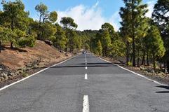 全景柏油路向泰德峰,特内里费岛 库存图片