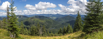 全景毛皮树包围的山湖 免版税库存图片