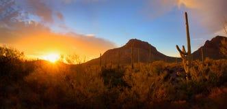 全景沙漠日落 免版税图库摄影