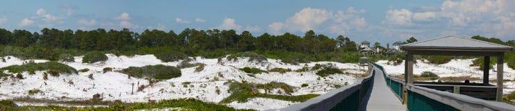 全景沿海鹿沙丘的湖 免版税库存图片