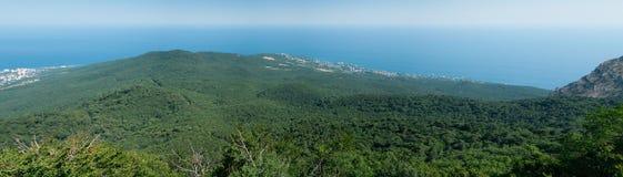 全景海山森林风景 免版税库存图片