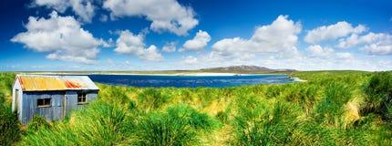全景海岛的肾脏 库存照片