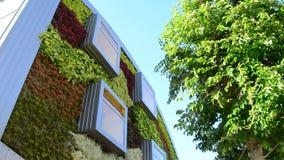 全景现代大厦门面与窗口和植被墙壁的 影视素材