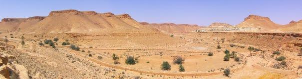 全景的沙漠 图库摄影