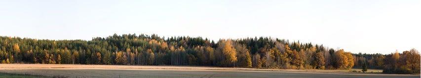 全景的秋天 库存图片
