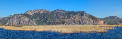全景芦苇水风景,在费特希耶附近,土耳其 免版税库存照片