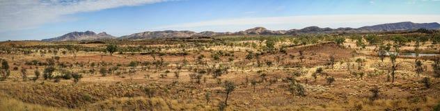 全景西部麦道范围的沙漠与Mt Sonder在后面,北方领土,澳大利亚 免版税库存图片