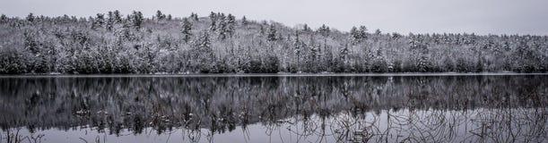 全景静止在冬天森林里 在寂静的湖水的反射 库存图片