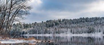 全景静止在冬天森林里 在寂静的湖水的反射 免版税库存照片