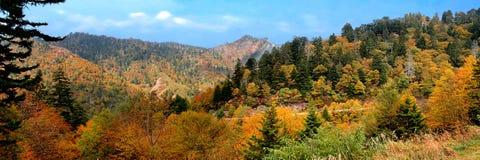 全景颜色的秋天 免版税库存照片